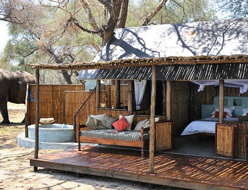 5 Unmissable Rustic Camps in Africa