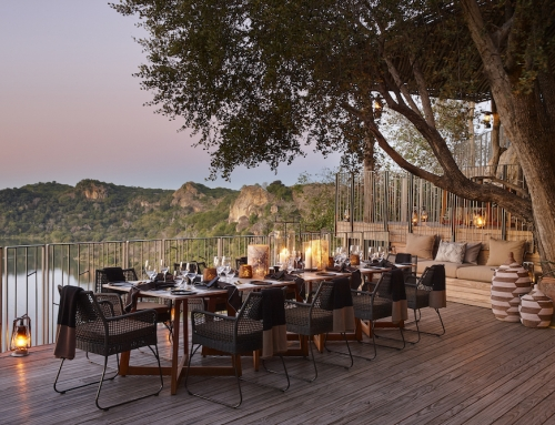 Top Ten Safaris for 2019