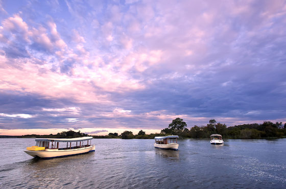 Zambezi Cruise Ilala Lodge