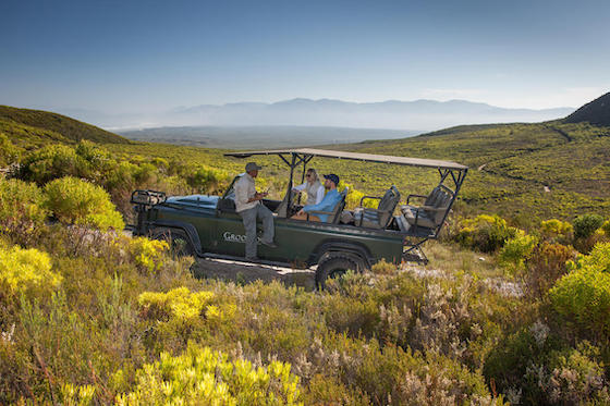 Grootbos Nature Drive