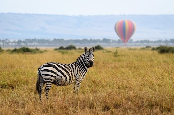 Hot air ballooning governors camps Kenya